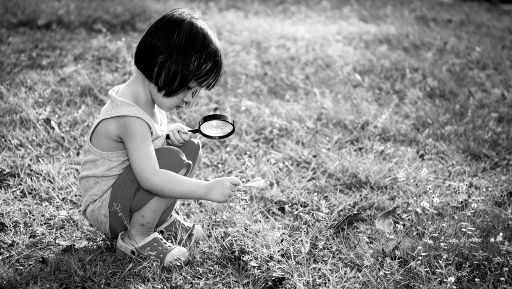 Curiosity: How Acting Like a 5-Year Old Can Make You a Better Leader